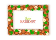Horizontal rectangle colored frame composed of delicious of hazelnut. Vector card illustration. Filbert nuts frame. Walnut fruit in the shell, whole, shelled Royalty Free Stock Image
