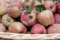 Horizontal red apples and leaves in a basquet Stock Photos