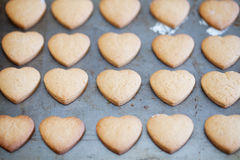 Horizontal rows of heart shapes cookies on baking tray Royalty Free Stock Photos