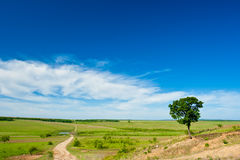 Horizontal rural avec la route image libre de droits