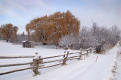 Horizontal rural de l'hiver Photographie stock libre de droits