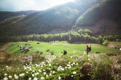 Horizontal rural de montagne Images libres de droits