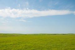 Horizontal rural grand ouvert de prairie Photos stock