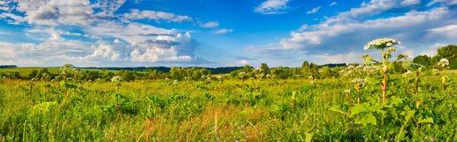 Horizontal rural Heraclium sur le premier plan Panorama Image libre de droits