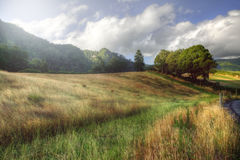 Horizontal rural paisible aux Açores, Portugal photos stock
