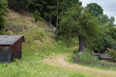 Horizontal rural Poulet et petites maisons photo stock