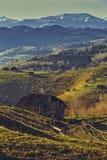Horizontal rural roumain Images libres de droits