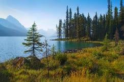 Horizontal scénique de région sauvage au Canada Photo libre de droits