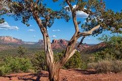 Horizontal scénique de Sedona Arizona Photos stock