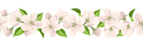 Horizontal seamless background with apple blossoms. Vector illustration. Royalty Free Stock Photography