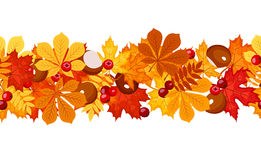 Horizontal seamless background with autumn leaves. Vector horizontal seamless background with autumn leaves, chestnuts and rowanberries on a white background Stock Photo