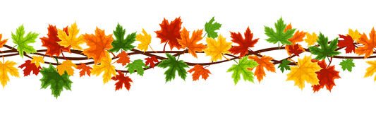 Horizontal seamless background with autumn maple l Stock Photography
