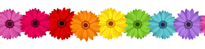 Vector horizontal seamless background with gerbera Royalty Free Stock Photo