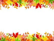 Horizontal seamless background with colorful autumn leaves. Vector illustration. Vector horizontal seamless frame with colorful autumn leaves on a white Royalty Free Stock Photos