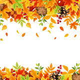 Horizontal seamless background with colorful falling autumn leaves. Vector illustration. Stock Image