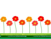Horizontal seamless background with colorful gerbera flowers. Vector illustration. Stock Photo