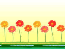 Horizontal seamless background with colorful gerbera flowers. Vector illustration. Royalty Free Stock Images
