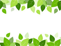 Horizontal seamless background with green leaves. Royalty Free Stock Photography