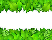 Horizontal seamless background with green leaves Royalty Free Stock Photography
