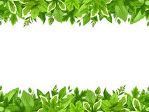 Horizontal seamless background with green leaves. Vector illustration. Stock Images