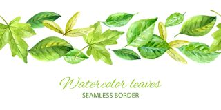 Horizontal seamless background with green leaves. watercolor vector Royalty Free Stock Image