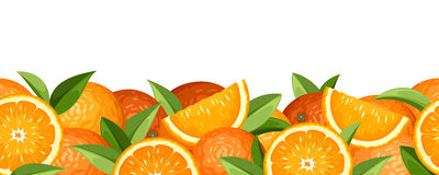 Horizontal seamless background with oranges. Stock Photos