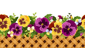 Horizontal seamless background with pansy flowers and wicker. Vector illustration. Stock Photography