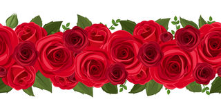 Horizontal seamless background with red roses. Vector illustration. Royalty Free Stock Photography