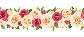 Horizontal seamless background with red and white roses. Vector illustration. Royalty Free Stock Image