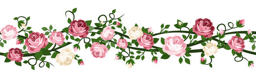 Horizontal seamless background with roses. vector illustration