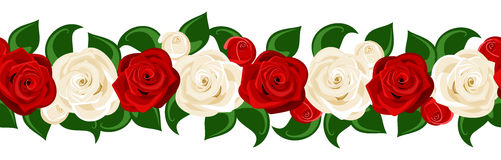 Horizontal seamless background with roses. Royalty Free Stock Photo