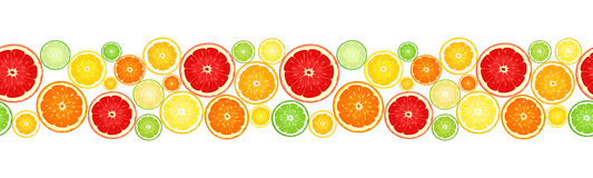 Horizontal Seamless Background With Citrus Fruits. Vector Illustration. Stock Image