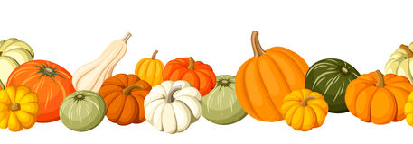 Horizontal Seamless Background With Colorful Pumpkins. Vector Illustration. Royalty Free Stock Image