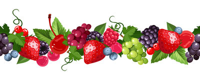 Free Horizontal Seamless Background With Various Berries. Vector Illustration. Royalty Free Stock Photography - 55036447