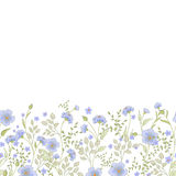 Horizontal seamless border with cute little flowers and herbs. Vector illustration. Royalty Free Stock Photography
