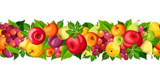 Horizontal seamless border with fruits. Vector illustration. Stock Photos