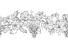 Horizontal Seamless Pattern with Grapes. Horizontal seamless pattern made with monochrome grape branches with leaves and berries. Hand drawn black and white line vector illustration