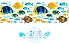 Horizontal seamless sea life border. Royalty Free Stock Image