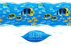 Horizontal seamless sea life border. Stock Photography