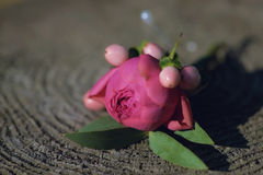 A pink peony small bouquet for buttonhole Stock Photography