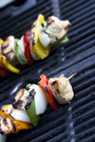 Chicken kabob done. Horizontal shot cooked chicken kabob on a grill. shallow depth of field Royalty Free Stock Image