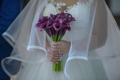 Bride wearing an opulent wedding dress with large tulle veil and holding a sophisticated plum calla lilies bridal bouquet. Horizontal shot of female dressed in Stock Photography