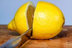 Horizontal shot of knife cutting lemon fruits stock photo
