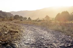 The horizontal shot of stone dusty road in a dry valley on a background of bushes. Royalty Free Stock Photography