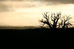 Horizontal silhouetté Photographie stock