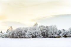 Horizontal Snow-Covered Photo libre de droits