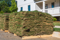 Horizontal Sod Closeup with House. Horizontal closeup photo of green and brown sod on wooden pallets with partial white house and trees in the background royalty free stock photography