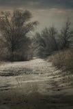 Horizontal sombre Images libres de droits
