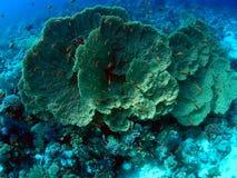 Horizontal sous-marin Photo libre de droits
