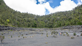 Horizontal stérile et forêt photographie stock